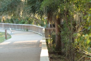 Boardwalk along the spring run and St. John's River at Blue Spring Park, Volusia County