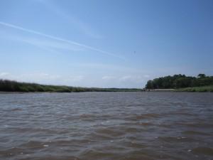 Mayhall Creek