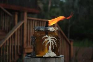 citronella-fire